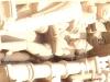 P3181070 (Medium).JPG